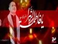 [Nauha 1438/2017] ہم آپ کا غم کیسے بھلا سکتے ہیں زہراؑ - Syed Ali Deep - Urdu