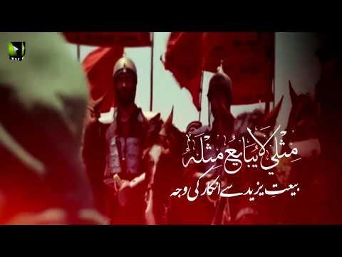 [Clip] بیعتِ یزید سے انکار کی وجہ   H.I Muhammad Raza Dawoodani - Urdu