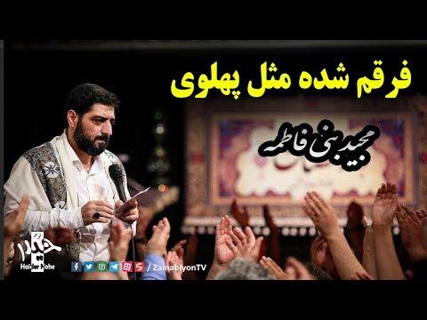 فرقم شده مثل پهلوی فاطمه - سید مجید بنی فاطمه | Farsi