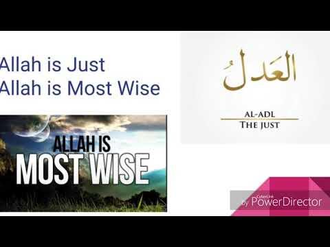 Ramadan Quran reflection pt 5 - English