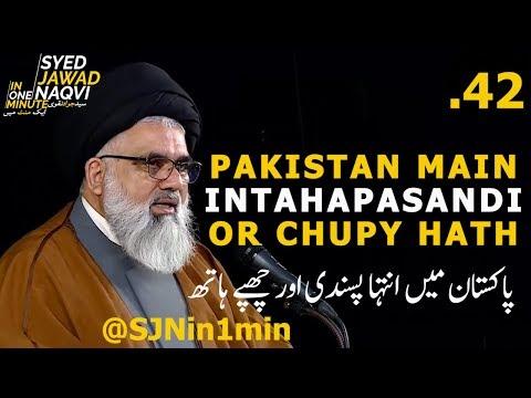 [Clip]  SJNin1Min 42  - PAKISTAN MAIN INTAHAPASANDI OR CHUPY HATH - Urdu