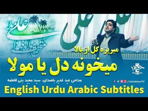 میریزه گل از بالا - مجید بنی فاطمه | Farsi sub English Urdu Arabic