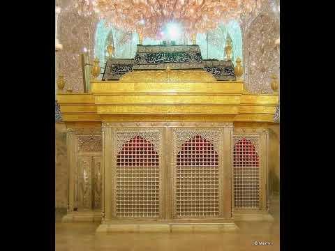 Roz Qabr e Imam Hussain a s ki ziarat karni chahiye - Urdu
