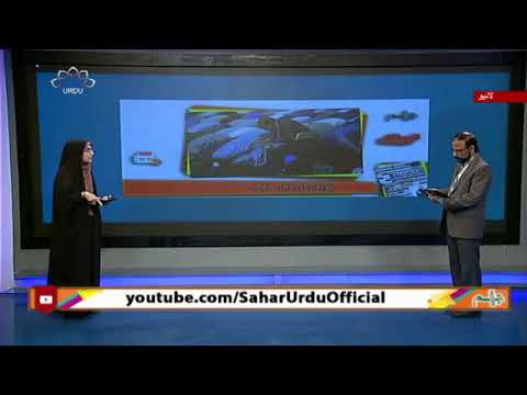 کورونا اور اہل مذہب  - 22 اپریل 2020 - Urdu