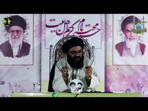 CLIP | اہلِ بیت ع کے لیے دہرا معیار | Hujjat ul Islam Maulana Syed Kazim Abbas Naqvi | Urdu