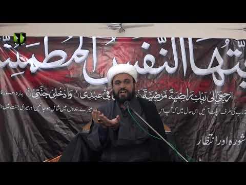 [08] Ashura Aur Intizar   حجّۃ الاسلام مولانا محمد علی فضل   Urdu