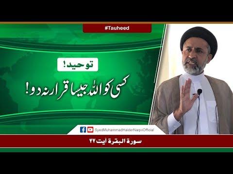 Tauheed! Kisi Ko Allah Jaisa Qarar Na Do! || Ayaat-un-Bayyinaat || Hafiz Syed Muhammad Haider Naqvi