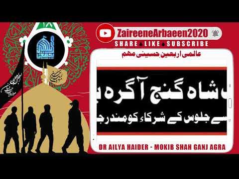 Clip   Dr Ailya Haider Jaffri   Khadime Mokib Shah Ganj Agra Khi   Aalami Zaireene Arbaeen 2020 - Urdu