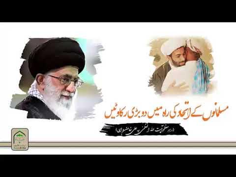 مسلمانوں کے اتحاد کی راہ میں دو بڑی رکاوٹیں    رھبر معظم سید علی خام