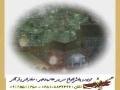 Awamel Khesarat e Nafs Az Nazar Quran by Dr. Rafee - Persian