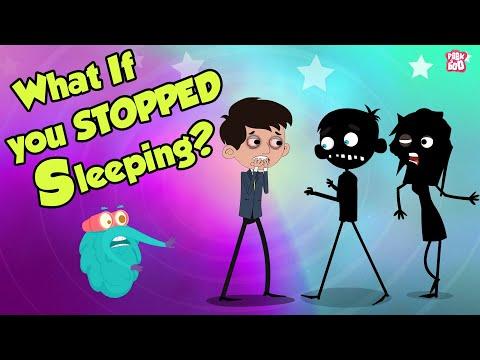 What If You Stopped SLEEPING?   Dr Binocs Show   English
