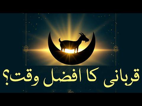 🎦  عید قربان 3   قربانی کرنے کا سب سے افضل وقت کونسا ہے؟ - Urdu