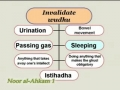 Lesson 14 on Acts invalidating Wudhu -Noor al-Ahkam -English