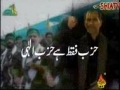 Haihat Minaa Zilla - Ali Deep Rizvi Nohay 2011 - URDU