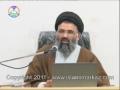 [islamimarkaz.com] Crisis In Egypt & The Middle East - Ustad Syed Jawad Naqavi - 5th Feb 2011 - Urdu