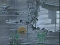 Japan tsunami NHK TV - All languages