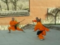 Self Defence Using Simple Stick Step-3 - Chinese All Languages