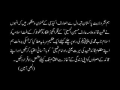 Shaheed Arif Hussain hussaini - Speech at a party meeting - Urdu