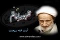 Ayatullah Behjat (r.a.) about Imam Mahdi (ajtf) - Urdu