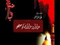 [CLIP] Who should do azadari by Aga Jawad Naqvi - Urdu