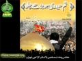 [Taranae Wahdat 2012] Tum Haideri Ho Barhay Chalo - MWM taranay 2012 - Urdu