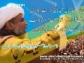 Govt withdraws Ban on MWM S.G. Raja Nasir Abbas in Skardu - Urdu