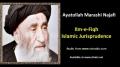 [ENGLISH] Islamic Jurisprudence - Excerpt from Ayatullah Marashi Najafi Speech - English