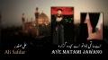 [HQ] Aye Matami Jawano - Ali Safdar Noha 1434/2013 - Urdu sub English
