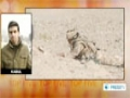 [27 Jan 2013] US led forces kill Afghans in night time operation - English