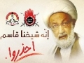 [19 May 2013] Global Protest against the brutal attack at Bahraini Famous Scholar Isa Qassiim - Urdu