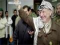 [Short Interviews] Yasir Arafat death - English