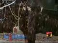 [01 MUST WATCH] Muharram 1435 - Aie Gul e Narjis Biya Biya - Irfan Haider Noha 2013-14 - Urdu