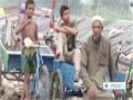 [28 Nov 2013] Displaced Rohingya Muslims lament India hardships - English