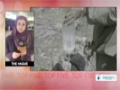 [02 Dec 2013] Iran calls for chemical weapons free world - English