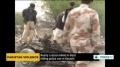 [12 Feb 2014] Nearly a dozen killed in blast hitting police van in Karachi - English
