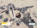 [24 Aug 2014] IRGC releases footage of Israeli drone shot down near Natanz - English