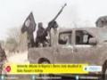 [14 Jan 2015] Amnesty: Nigeria attacks deadliest so far by Boko Haram - English