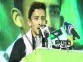 [Himayat Mazloomin Conference] Tarana: Br Ahmed Nasiri - 20 Feb 2016 - Urdu