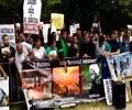 [MWA - AUS] Protest Against Terrorism on Shahdat Of Sh. Nimar - English