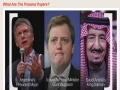 What Are The Panama Papers? [ TestTube News ] - English