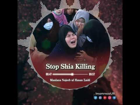 Stop Shia Killing | Hazara Shia Killing | Shia Genocide | Official Shrine of Imam Reza | Urdu
