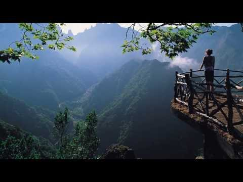 Nature Beautiful short video HD   All Languages