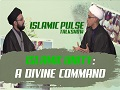 Islamic Unity: A Divine Command   IP Talk Show   English